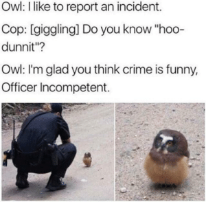 "Crime, Funny, and Owl: Owl: I like to report an incident.  Cop: [giggling] Do you know ""hoo-  dunnit""?  Owl: I'm glad you think crime is funny,  Officer Incompetent. Me👍irl"