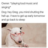 Memes, Singing, and 🤖: Owner: *playing loud music and  Singing  Dog: hey Greg, you mind shuttingthe  hell up. I have to get up early tomorrow  and go back to sleep  ig Calphadanny I'm gettin old (via @alphadanny)