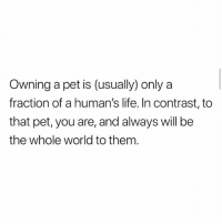 Life, Memes, and True: Owning a pet is (usually) only a  fraction of a human's life. In contrast, to  that pet, you are, and always will be  the whole world to them True