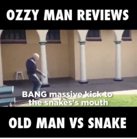 A truly epic fight...: OZZY MAN REVIEWS  BANG massive kick to  the snakes s mouth  OLD MAN VS SNAKE A truly epic fight...