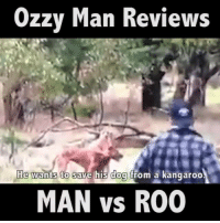 Me critical analysis of man vs roo.🎙: Ozzy Man Reviews  He wants to save his dog from a kangaroo.  MAN vs R00 Me critical analysis of man vs roo.🎙
