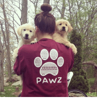Thanks @meeko_kona for the support in our maroon tribal long sleeve order now at PawzShop.com: P ANZ Thanks @meeko_kona for the support in our maroon tribal long sleeve order now at PawzShop.com