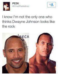 Someone just went full retard.: P22K  @ChiefPeekaboo  I know I'm not the only one who  thinks Dwayne Johnson looks like  the rock  ECA Someone just went full retard.