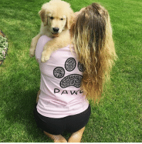 Thanks @shelby_melby for the support in our grapefruit paisley shirt order now at PawzShop.com 🐶🐾: PA w Thanks @shelby_melby for the support in our grapefruit paisley shirt order now at PawzShop.com 🐶🐾