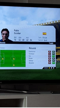 Memes, Pablo Escobar, and Resume: Pablo  Escobar  AGE GEN P01  Talla 176 cm  16 44-60 62-86  1 mois  Résumé  Technique When you've made billions from being a drug lord but you want to be a footballer