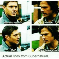 Ran over the 4th wall with the impala tbh: Padalecki.  Yeah, amen Padaleski  What?  DeckL m pretty sure.  Actual lines from Supernatural. Ran over the 4th wall with the impala tbh