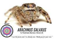 "Future, Reddit, and Truth: PAID FOR BY  ELECTIO  ARACHNUS GALAXUS  For Penultimate Chairman of Sector 5.8  ""I see the future and I've already won. Thankyou for your vote."" <p>[<a href=""https://www.reddit.com/r/surrealmemes/comments/8gu4zr/a_vote_for_arachnus_is_a_vote_for_truth/"">Src</a>]</p>"
