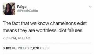 memehumor:  Get It Together, Dudes: Paige  @PeachCoffin  The fact that we know chameleons exist  means they are worthless idiot failures  20/09/14, 4:03 AM  3,183 RETWEETS 5,670 LIKES memehumor:  Get It Together, Dudes