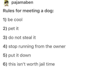 Dogs, Jail, and Cool: pajamaben  Rules for meeting a dog:  1) be cool  2) pet it  3) do not steal it  4) stop running from the owner  5) put it down  6) this isn't worth jail time Meeting dogs