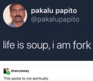 30 Memes Guaranteed To Make You Laugh: pakalu papito  @pakalupapito  life is soup, i am fork  shanzsway  This spoke to me spiritually 30 Memes Guaranteed To Make You Laugh