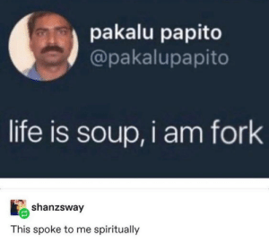 Advice, Life, and Tumblr: pakalu papito  @pakalupapito  life is soup, i am fork  shanzsway  This spoke to me spiritually awesomesthesia:  Top 10 Wise Words Of Advice