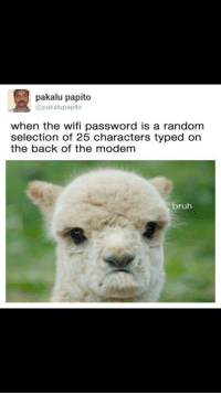 Bruh, Wifi, and Back: pakalu papito  @pakalupapito  when the wifi password is a random  selection of 25 characters typed or  the back of the modem  bruh