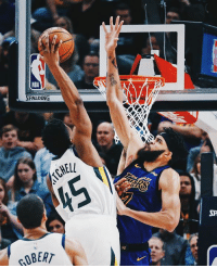"Robert and Over: PALDING  ROBERT 6'2"" Spida climbed over 7'2 JaVale"
