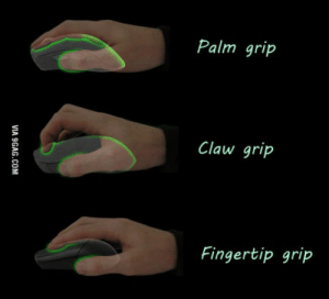 Palm, You, and And: Palm grip  Claw grip  Fingertip grip Palm grip and you?