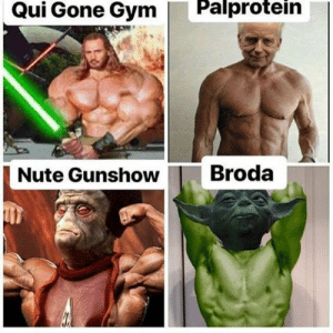 It isn't a story the Jedi would tell you: Palprotein  Qui Gone Gym  Broda  Nute Gunshow It isn't a story the Jedi would tell you