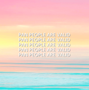 "Tumblr, Blog, and Blue: PAN PEOPLE ARE VALID  PAN PEOPLE ARE VALID  PAN PEOPLE ARE VALID  PAN PEOPLEARE VALID  PAN PEOPLEARE VALID posi-pan:  [Image Description: A picture of a pink, yellow, and blue sky reflected on an ocean, with the words ""pan people are valid"" in white, bold text five times in the center.] pan people are wonderful and valid y'all"