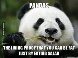 Fat, Living, and Proof: PANDAS  THE LIVING PROOF THAT YOU CAN BE FAT  JUST BY EATING SALAD  HEMEFUL COM Salad must be unhealthy