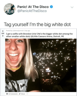 Detroit, Fucking, and Little Caesars: Panic! At The Disco  @PanicAtTheDisco  Pk  Tag yourself I'm the big white dot   Posted by u/tammylynnrutz 1 day ago  219  I got a selfie with Brendon Urie! (He's the bigger white dot among the  other smaller white dots) @Little Caesars Arena, Detroit, M]I  -12 Comments → Share actualbrendonurie:  I fucking hate Brendon Urie