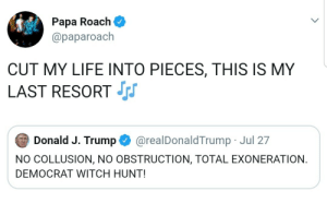 meirl: Papa Roach  @paparoach  CUT MY LIFE INTO PIECES, THIS IS MY  LAST RESORT  Donald J. Trump  @realDonaldTrump Jul 27  NO COLLUSION, NO OBSTRUCTION, TOTAL EXONERATION  DEMOCRAT WITCH HUNT! meirl