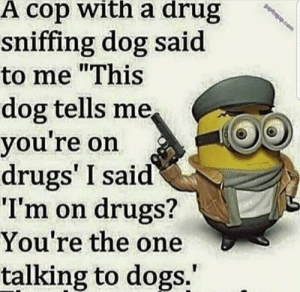 """Hahahaha another minion meme. Hillarious😂🤣: papbagap.com  A cop with a drug  sniffing dog said  to me """"This  dog tells me,  you're on  drugs' I said  """"I'm on drugs?  You're the one  talking to dogs."""" Hahahaha another minion meme. Hillarious😂🤣"""