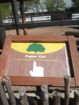 Revenge, Trees, and Glorious: Paper Cut  A tree's one glorious moment of revenge Randomly placed in a petting zoo