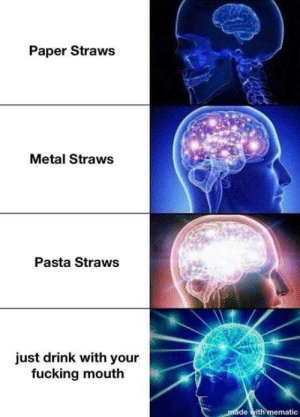 Different flavors: Paper Straws  Metal Straws  Pasta Straws  just drink with your  fucking mouth  made with mematic Different flavors