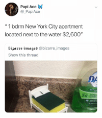 "Apple, Be Like, and Funny: Papi Ace VW  @_PapiAce  "" 1 bdrm New York City apartment  located next to the water $2,600""  bizarre images @bizarre_images  Show this thread  DA  ANTIBA  P TO  DISHES  apple blos It be like that 😩😓"
