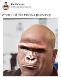 Bruh: Papi Memes  The BardockObama  When a kid falls into your pawn shop Bruh