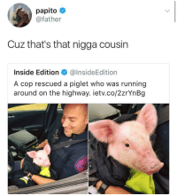 Blackpeopletwitter, Running, and Who: papito  @father  Cuz that's that nigga cousin  Inside Edition@InsideEdition  A cop rescued a piglet who was running  around on the highway. ietv.co/2zrYnBg <p>It's a brotherhood 👮🐷 (via /r/BlackPeopleTwitter)</p>
