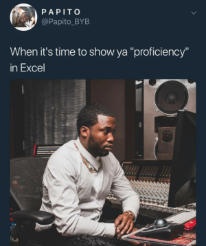 """I want a sensitivity analysis on our profit margins on my desk by lunch"" by KingPZe MORE MEMES: PAPITO  @Papito_BYB  When it's time to show ya ""proficiency'  In Excel ""I want a sensitivity analysis on our profit margins on my desk by lunch"" by KingPZe MORE MEMES"