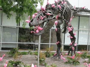 pardonmewhileipanic: stunningpicture:  A flock of lawn flamingos can pick a T-rex clean in under 90 seconds  nature is brutal : pardonmewhileipanic: stunningpicture:  A flock of lawn flamingos can pick a T-rex clean in under 90 seconds  nature is brutal