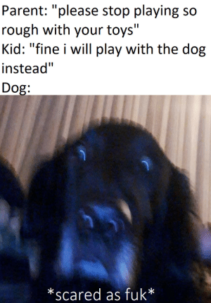 """scared as fuk: Parent: """"please stop playing so  rough with your toys""""  Kid: """"fine i will play with the dog  instead""""  Dog:  *scared as fuk* scared as fuk"""