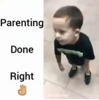 Memes, 🤖, and Busted: Parenting  Done  Right  phop Busted