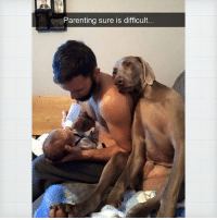 9gag, Memes, and 🤖: Parenting sure is difficult If you have a ruff day 🐶 Follow @9gagcute - 9gag dogmemes servicedog