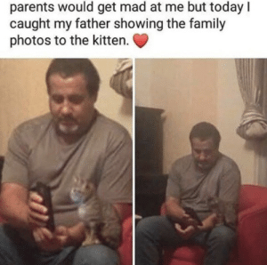 Family, Parents, and Guess: parents would get mad at me but today I  caught my father showing the family  photos to the kitten New family member i guess