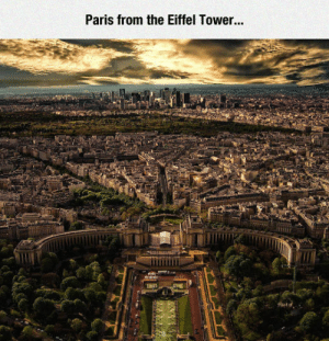Tumblr, Blog, and Eiffel Tower: Paris from the Eiffel Tower... srsfunny:  Gorgeous View