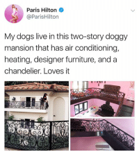 Dogs, Paris Hilton, and Work: Paris Hilton  @ParisHilton  My dogs live in this two-story doggy  mansion that has air conditioning,  heating, designer furniture, and a  chandelier. Loves it I work hard so my dog can have air conditioning (@parishilton)