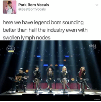 Memes, Best, and 🤖: Park Bom Vocals  @Best BomVocals  here we have legend bom sounding  better than half the industry even with  swollen lymph nodes  KBS2  5.1 This performance tho . . . . . . Credit to owner✌