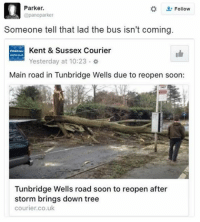 Memes, Maine, and Tree: Parker.  Follow  @panoparker  Someone tell that lad the bus isn't coming.  E Kent & Sussex Courier  Yesterday at 10:23  Main road in Tunbridge Wells due to reopen soon:  Tunbridge Wells road soon to reopen after  storm brings down tree  courier.co.uk He's gonna be waiting for a while... 😂 (via @panoparker)
