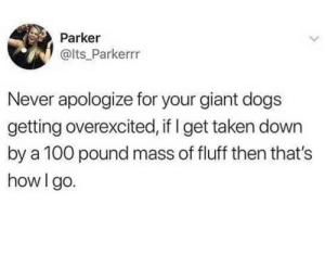 Dogs, Taken, and Giant: Parker  @lts Parkerrr  Never apologize for your giant dogs  getting overexcited, if I get taken down  by a 100 pound mass of fluff then that's  how I go. It's been real