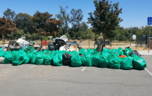 Trash, San Jose, and Today: PARKING  ONLY  VAN  ACCESSIBLE  MINIMUM  FINE $250  Cyclone  SANO  BEautifystorg  SANTOSE  Beautifysi org  0-LITTERYRO  morr  8-975-7233  PROGRAM Today we removed 162 bags of trash as well as appliances and carts from a section of a creek in downtown San Jose. Creeks and rivers are just as important as beaches! Any trash in the creek/river will make its way to the sea, so it is very important to keep them clean!