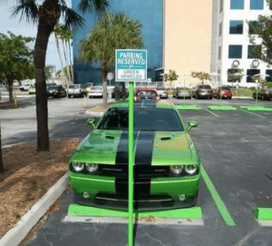 Yeah, Green, and Parking: PARKING  RESERVED  VEHİCLES F*Yeah GO GREEN