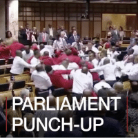 "Guns, Memes, and Party: PARLIAMENT  PUNCH-UP Repost:@BBCNews-""10 FEB: Punches have been thrown inside the SouthAfrican parliament as members from the Economic Freedom Fighters party were thrown out during the annual state of the nation address. Another opposition party, the Democratic Alliance, then walked out. The opposition had been interrupting President JacobZuma each time he began to speak. Outside the building, police officers fired stun guns and grenades to break up clashes between opposition and government supporters."" 👊😩🇿🇦 WSHH"