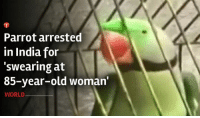 According to reports, parrot was trained for two years by its owner, Suresh, to abuse his 85-year-old stepmother http://goo.gl/Jnq0qd: Parrot arrested  in India for  'swearing at  85-year-old woman'  WORLD According to reports, parrot was trained for two years by its owner, Suresh, to abuse his 85-year-old stepmother http://goo.gl/Jnq0qd