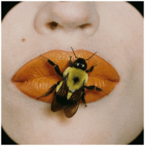 Tumblr, Blog, and Http: partialboner:Irving Penn