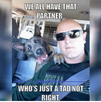 All Lives Matter, Love, and Memes: PARTNER..  WHO'S JUST A TAD NOT  RIGHT When you love your job and your partner 😂 Like my posts? Follow my partners @back.the.badge @veterans_сome_first police cop cops thinblueline lawenforcement policelivesmatter supportourtroops BlueLivesMatter AllLivesMatter brotherinblue bluefamily tbl thinbluelinefamily sheriff policeofficer backtheblue