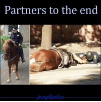 America, Memes, and Police: Partners to the end This breaks my heart! pray4police p4p supportthepolice police cop hero thinblueline lawenforcement America policelivesmatter supportourtroops BlueLivesMatter sheepdogs police thankacop safetyday thankacop hugACop SupportLawEnforcement