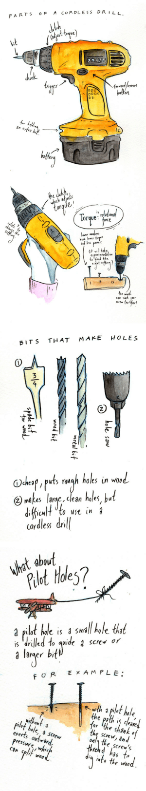 sawdustbear:  Some assorted sketches from a zine series I wanna do about building things. This one will be about putting screws in and making holes in wood!Which is a very straightforward thing to do, but sometime it really helps to just have a ton of information about it.: PARTS oF A CORDLESS DRI  ust torque  uC  iqger  dtan  lc  bte   yhich ad usts  or  orque:  . rotationa  orc  hare laver  ind less pawer  erperimcrtatian  tn tind tht  svew too far   BITS THAT MAKE HOLES  3  2.  O-  Oche叩,ruts ronoh holes in wod  gh holes in wo0  mkes larac, cean hales,b.  icuto use in  cordless dril|   ADOu  hat about  let toles?  ilot hole is 3 SmalI hale tha  s drilled to quide 1 screv or  laraer  O R EX AM PLE  with a pilet hale,  the path is deaved.  ar The shank o  the screw, and  onl\ the screw^  withonta  dlot hale, a screw  ererts outwar  ressuye whic  Hhvosd has 1o  Can Splif waa  inta the Won sawdustbear:  Some assorted sketches from a zine series I wanna do about building things. This one will be about putting screws in and making holes in wood!Which is a very straightforward thing to do, but sometime it really helps to just have a ton of information about it.