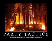Burn it, burn it all.  -Irydia the Charitable: PARTY TACTICS  There is a monster in the woods? Burn it, Burn it all Burn it, burn it all.  -Irydia the Charitable