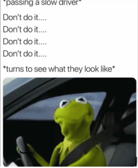 "Funny, Driver, and They: ""passing a slow driver  Don't do it....  Don't do t....  Don't do it....  Don't do it....  *turns to see what they look like* 👀"